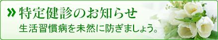 tokuteisinryou_btn